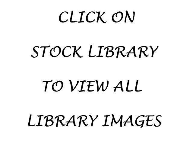 STOCK LIBRARY